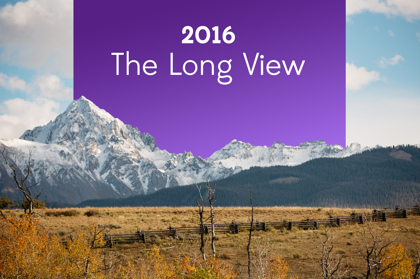 Crowdbabble looking back on social media marketing in 2016 the long view