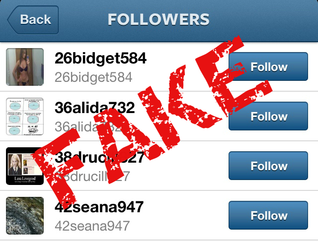 Fake Instagram Followers